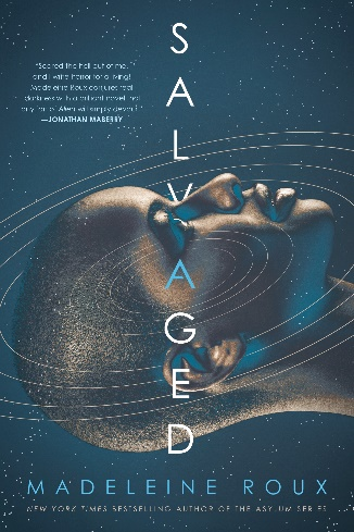 cover of Salvaged