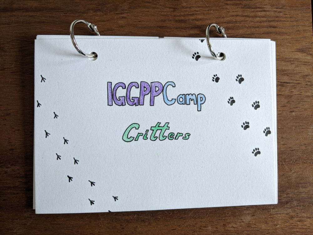 """Finished flip book front cover with """"IGGPPCamp Critters"""" written in bubble letters and colored in, surrounded by lines of paw prints going from top to bottom of the page"""